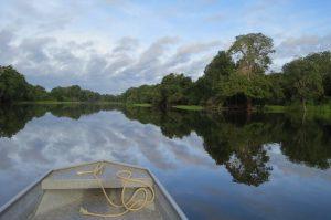 Amazonas mit Blick von einem Boot aus