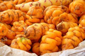 peruanische Kartoffel