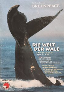 Plakat Wale