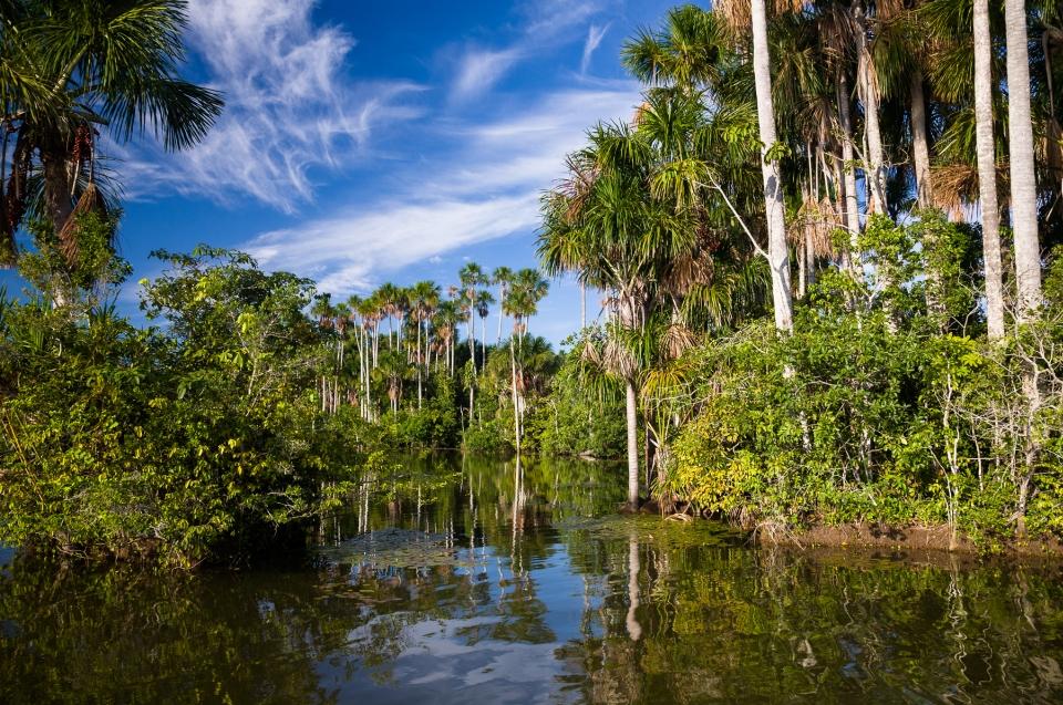 Biodiversität und Artenvielfalt: Sandoval Lake © Konrad Wothe