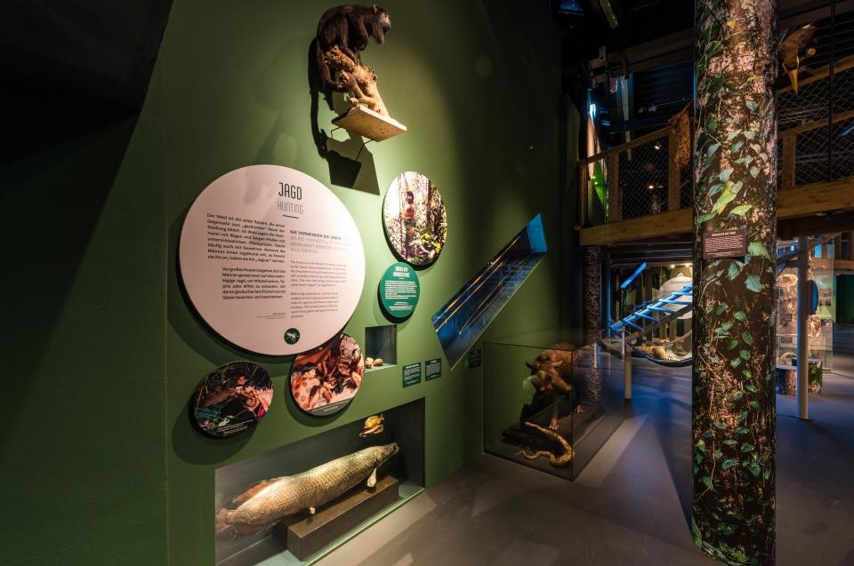 Bereich Jagd Regenwald Ausstellung - Copyright: Andreas Jacob