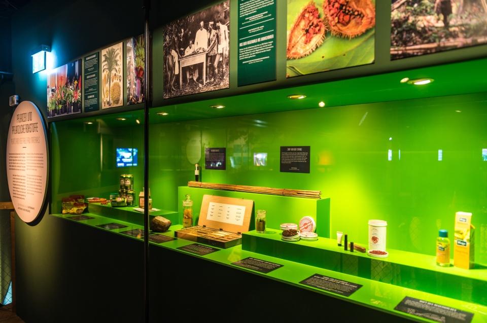 Bereich Pflanzliche Rohstoffe Regenwald Ausstellung - Copyright: Andreas Jacob